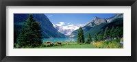 Framed Shore of Lake Louise, Banff National Park, Alberta, Canada
