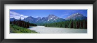 Framed Rocky Mountains Near Jasper, Alberta Canada
