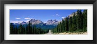 Framed Road In Canadian Rockies, Alberta, Canada