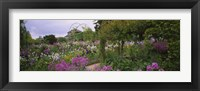 Framed Flowers In A Garden, Foundation Claude Monet, Giverny, France