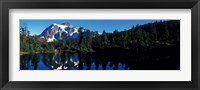 Framed Mount Shuksan North Cascades National Park WA