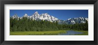 Framed Trees along a river, Near Schwabachers Landing, Grand Teton National Park, Wyoming