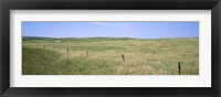 Framed Grass on a field, Cherry County, Nebraska, USA