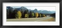 Framed Road Alberta Canada