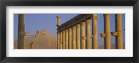 Framed Low angle view of Great Colonnade, Palmyra, Syria