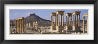 Framed Colonnades on an arid landscape, Palmyra, Syria