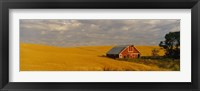 Framed Barn in a wheat field, Palouse, Washington State, USA