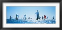 Framed Sailboat Race, Key West Florida, USA