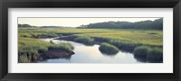Framed Salt Marsh Cape Cod MA USA