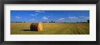 Framed Hay Bales, South Dakota, USA