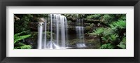 Framed Waterfall in a forest, Russell Falls, Mt Field National Park, Tasmania, Australia
