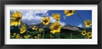 Framed Low Angle View Of Mountains, Montana, USA