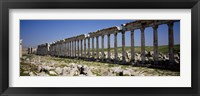 Framed Row of Columns, Cardo Maximus, Apamea, Syria