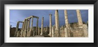 Framed Columns of buildings in an old ruined Roman city, Leptis Magna, Libya