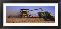 Framed Combine harvesting soybeans in a field, Minnesota
