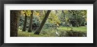 Framed Trees near a pond in a park, Vondelpark, Amsterdam, Netherlands