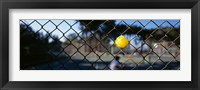 Framed Close-up of a tennis ball stuck in a fence, San Francisco, California, USA