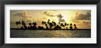 Framed Silhouette of palm trees on an island at sunset, Laughing Bird Caye, Victoria Channel, Belize