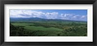 Framed High angle view of sugar cane fields, Cienfuegos, Cienfuegos Province, Cuba