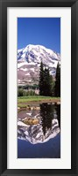 Framed Reflection of a mountain in a lake, Mt Rainier, Pierce County, Washington State, USA