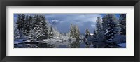 Framed Reflection of tree in a creek, Spring Creek, Mt Rundle, Canmore, Alberta, Canada