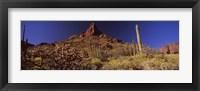 Framed Organ Pipe Cactus National Monument, Arizona