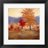 Framed Fall Splendor II