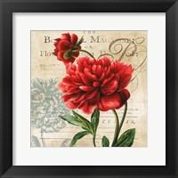 The Botanist Magazine Framed Print
