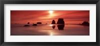 Framed Beach sunset, Olympic National Park, Washington State