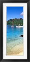 Framed Sailboats in the ocean, Tahiti, Society Islands, French Polynesia (vertical)
