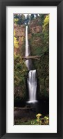Framed Waterfall in a forest, Multnomah Falls, Columbia River Gorge, Multnomah County, Oregon, USA