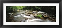 Framed River flowing through a forest, Little Pigeon River, Great Smoky Mountains National Park, Tennessee, USA