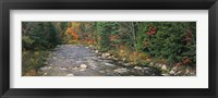 Framed River flowing through a forest, Ellis River, White Mountains, New Hampshire, USA