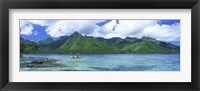 Framed Polynesian people rowing a yellow outrigger boat in the bay, Opunohu Bay, Moorea, Tahiti, French Polynesia