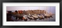 Framed Sailboats on the coast, Stora Nassa, Stockholm Archipelago, Sweden