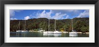 Framed Yachts anchored at the harbor on La Digue Island, Seychelles