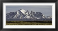 Framed Field with snowcapped mountains, Paine Massif, Torres del Paine National Park, Magallanes Region, Patagonia, Chile