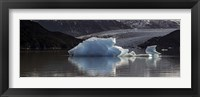 Framed Iceberg in a lake, Gray Glacier, Torres del Paine National Park, Magallanes Region, Patagonia, Chile, Lake