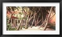 Framed Island House