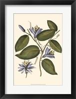 Framed Lavender Floral III