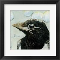 Framed Bubbles - Birdbath