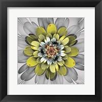 Framed Fractal Blooms IV