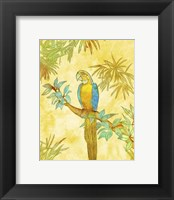 Framed Macaw on Branch I