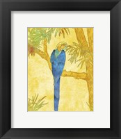 Framed Macaw on Branch II