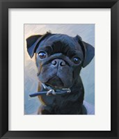 Framed Pug Baby Blue