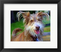 Framed Terrier Hairspray