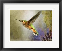 Framed Hummer Flight