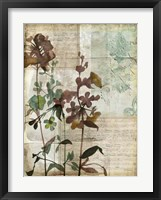 Music Box Floral I Framed Print