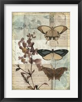 Music Box Butterflies II Framed Print