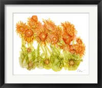 Framed Sunlit Poppies I